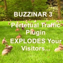 Buzzinar 2 Wordpress Plugin Review