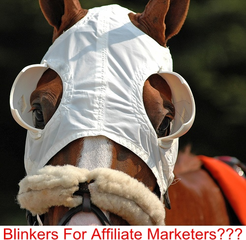 Affiliate Marketers need blinkers to keep their focus, a good daily action schedule is the nearest thing to affiliate blinkers