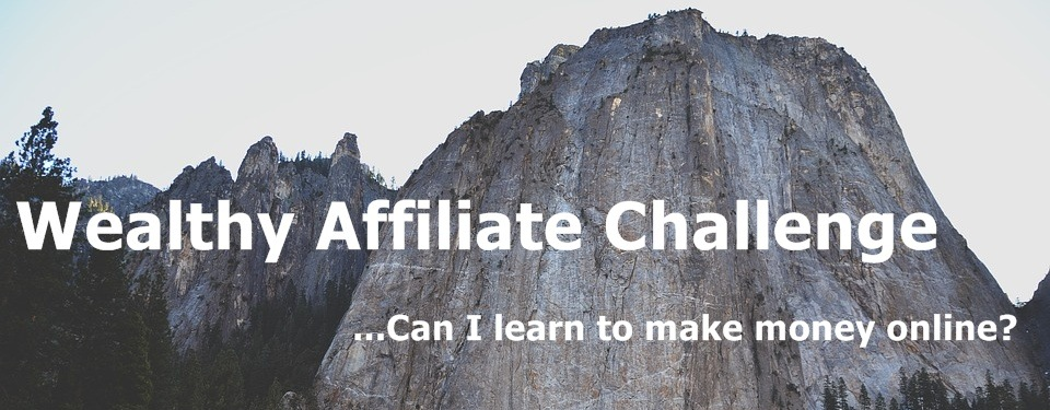 Can I learn to make money online following the WA training