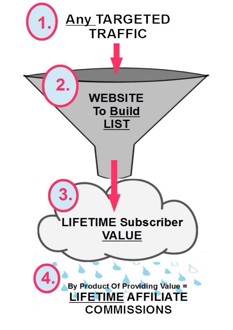 I've describer my business as a Lifetime Subscriber Value Funnel, and here is what it looks like...